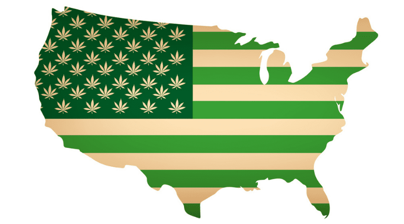 CBD Laws State by State