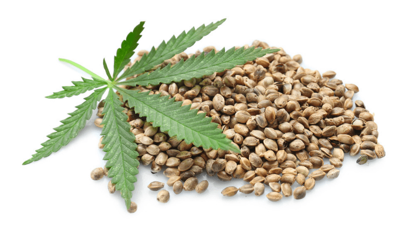 Hemp Benefits, Uses & Information