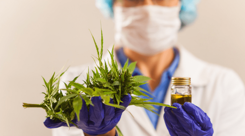 Is CBD Oil Healthy and Safe to Use to Treat Illnesses